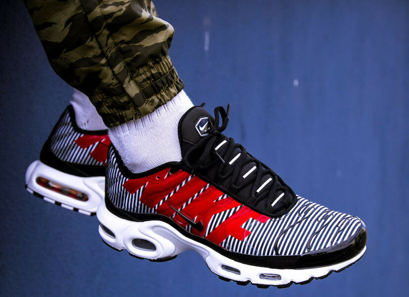 Nike Air Max Plus Striped Sale